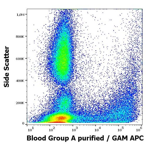 Anti-Blood Group A Purified