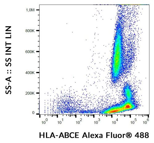 Anti-HLA-ABCE Alexa Fluor® 488